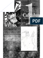 Calculus Solutions Manual 1
