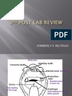 Bio 22 Lab - Post Lab 3 II