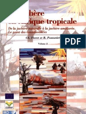 En Jachère TropicalePrairie Agriculture La Afrique 5cjS4ARL3q
