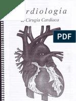 Anatomia y Semiologia Cardiaca