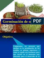 Tema 24. Germinacion y Dormicion de Las Semillas Bis (1)