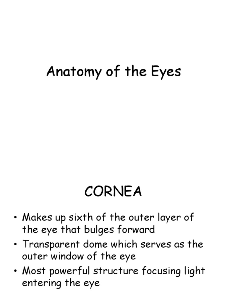 Anatomy of the Eyes | Human Eye | Eye