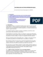 AGRICULTURA_-_Agricultura_Ecologica_en_cultivos_intensivos_bajo_plástico