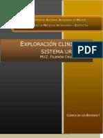 Exploracion Clinica Del Sistema Urinario