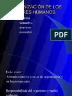 4to Bio Humana y Salud1