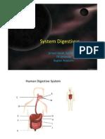 Microsoft PowerPoint - Digestive 2011.