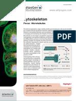 Cytoskeleton_2012