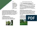 Environmental Problem.Test.9 form