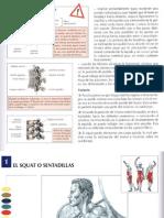 ejercicios de fortalecimiento (musculación) - libro - 111 pags - praxis