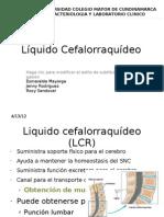 Liquid Os