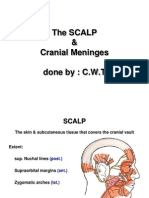 The SCALP Meninges E-learning