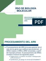 UNIDAD IVC Procesamiento Post Transcripcional Del ADN