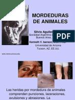 Mordedura Animales