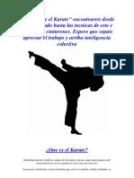Todo Sobre El Karate