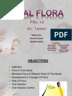 Gp 12 - Oral Flora
