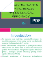 Transgenic Plants With Increased Physiological Efficiency