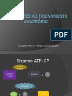 ADAPTAÇÕES AO TREINAMENTO ANAERÓBIO