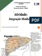 Bioquimica Metabolismo Integrado 09n 2