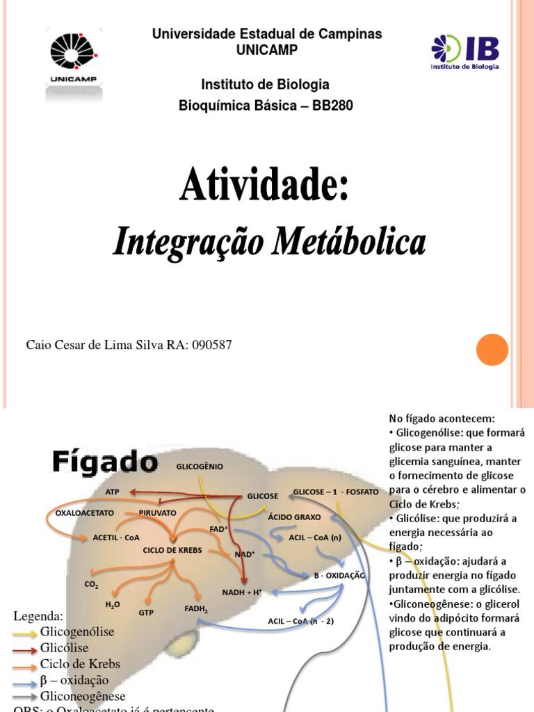 Bioquimica Metabolismo Integrado 09n 2 - Ciclo do Ácido..