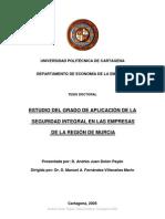 Tesis Doctoralseguridad Integral en Las Empresas