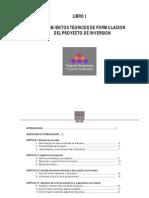 ADM Nuevas Empresas 2012 Lineamientos Teoricos de Formulacion Del Proyecto de Inversion