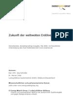 Energywatchgroup 2008