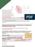 ECG (2)