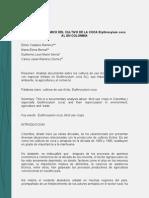 analisis eocon coca.pdf