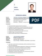 Consultor - Isaac Saavedra - Rrhh