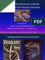 Genes and Chromosomes_2010-1