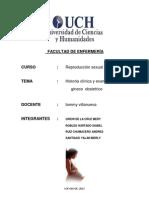 Historia Cilinica Gineco Obstetra[1]