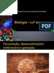 Biologia – 12º Ano o to Embrionário e o