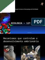 Biologia – 12º Ano (Mecanismos Que Controlam o to Embrionário - Parto)