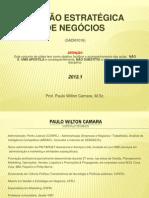 GESTÃO ESTRAT NEG_matPPT 2012_1