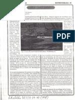 Drews 1998 Murcielagos de La Casona