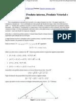 Cálculo Vetorial Produto interno, Produto Vetorial e Regras de derivação