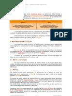 Tema01_Reproduccion y Gestacion