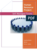 Defining Self Managed Teams