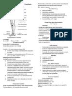 Below Knee and Through Knee Prosthesis