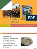 O Estudo Dos Fósseis - o Que são fósseis