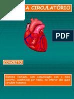 Sistema Circulatório sem figura