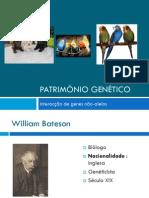 Património Genético (Interacção génica, Cristas de Galinhas)