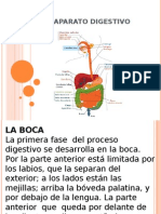 El Aparato Digestivo0 Jaja