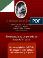 Cambios_embarazo