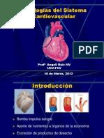 Cardiopatias congénitas I hora 2012