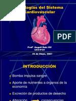 Cardio II