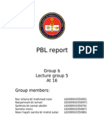 Pbl Report