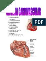 1. Sistema Cardiovasculas Ale