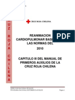Capitulo III Rcp 2010 Manual Ppaa Crch1