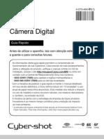 Manual de Instrucoes Dsc w530 PDF
